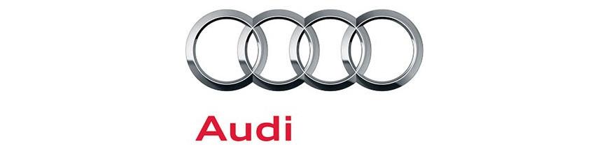 Navegadores para Audi