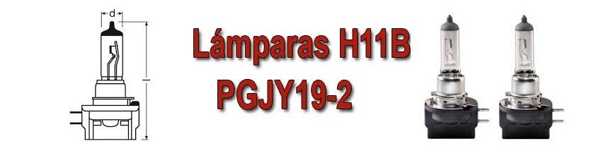 Bombillas H11B