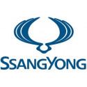 Navegadores para SsangYong